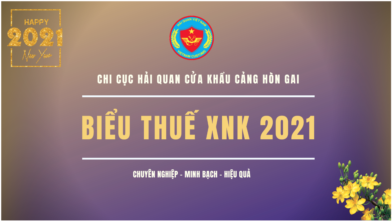 Biểu thuế XNK 2021 - Bản cập nhật ngày 29/12/2020